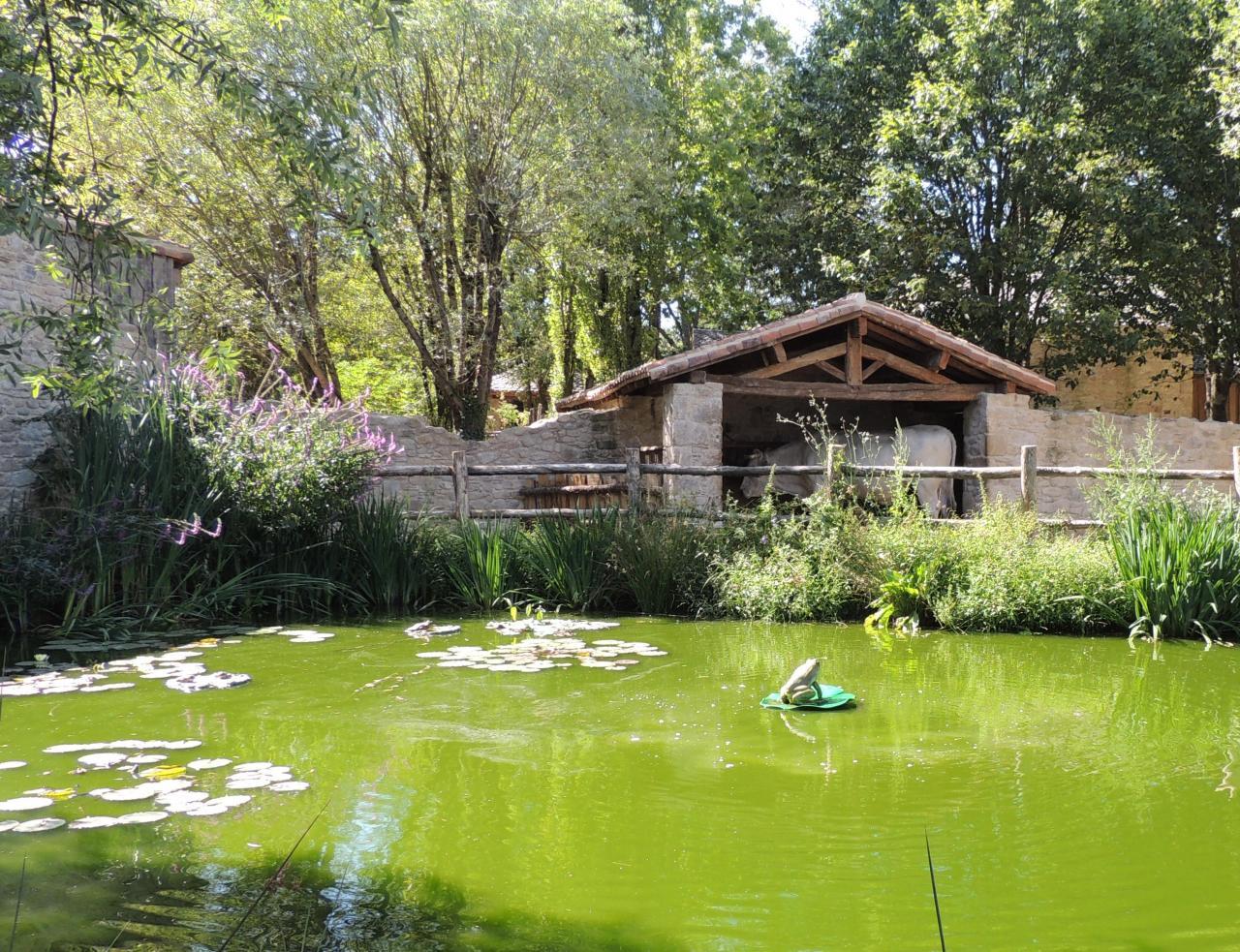 Les jardins de la Fontaine (2)